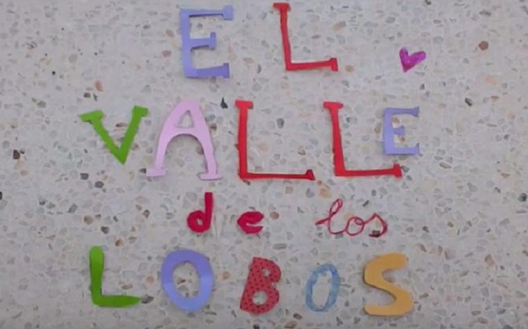 Imagen del texto 'El valle de los lobos'