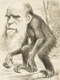 Imagen de un dibujo de un mono con cara de humano